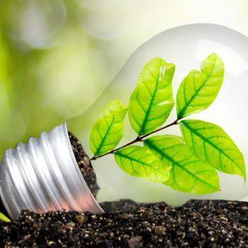 Decine di progetti e iniziative di big dell'industria, PMI, istituzioni, scuole e associazioni e oltre 50mila contatti hanno contrassegnato la seconda edizione del Mese dell'Efficienza Energetica