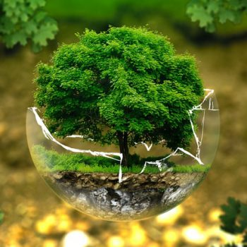 I Criteri Ambientali Minimi