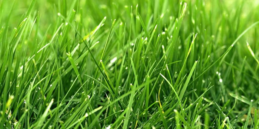 Edilizia sostenibile costi e prospettive Progetto Agrilizia